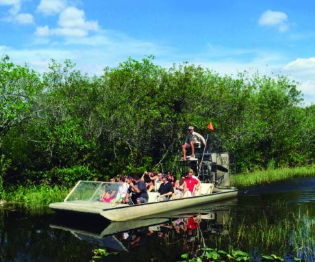USA sevärdheter - Everglades Tour National Park - Miami