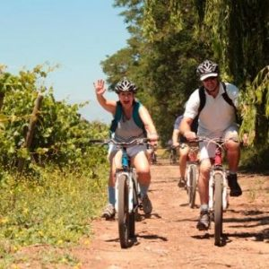 Santiago Wine Tour by bike